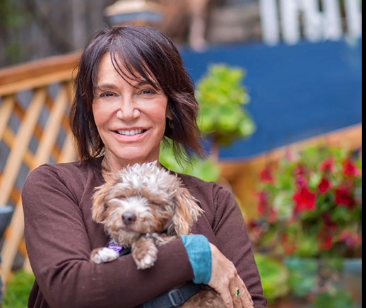 Sherri Franklin of Muttville Senior Dog Rescue: Helping Senior Dogs Get a Fresh Start's MissionBox Cover Photo