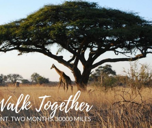 #30000Miles Virtual Walk/Run Through Africa - Featured Photo
