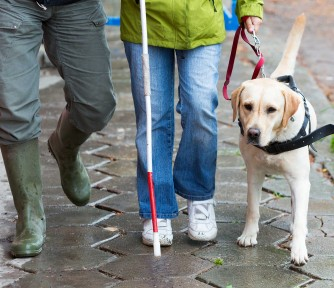 How Guide Dogs Reversed Its Legacy Income Fortunes - Featured Photo