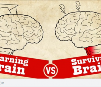 Understanding Trauma: Learning Brain vs Survival Brain - Featured Photo