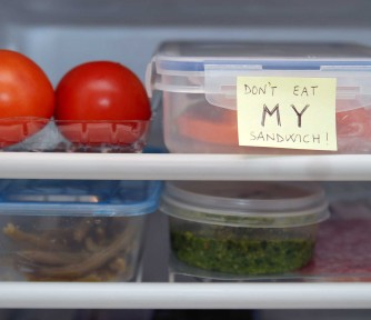 You'll Be Sorry If You Steal My Lunch Again!'s MissionBox Cover Photo