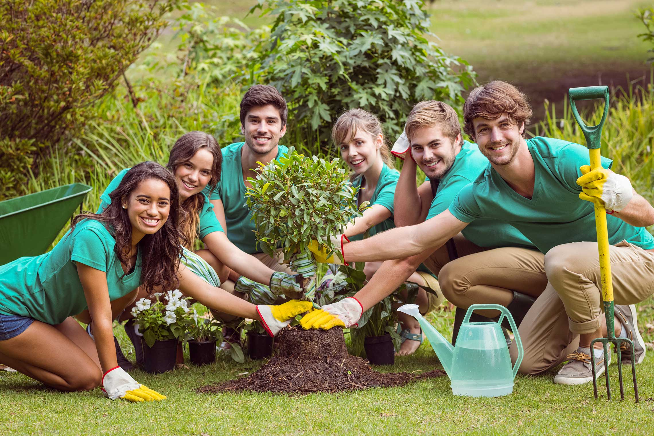 micro volunteering opportunities making a difference in a matter