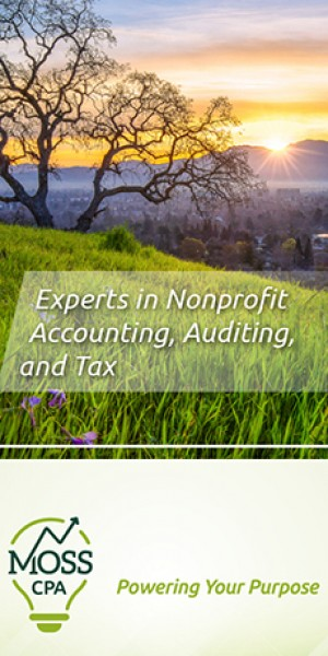Moss CPA: Accounting
