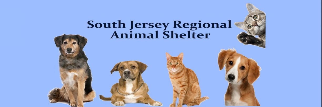 South Jersey Regional Animal Shelter's MissionBox Cover Photo