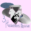 3 Husketeers Rescue