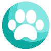 Animal Rescue Cambodia
