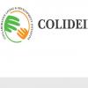 Collaborative Living and Development Initiative (COLIDEIN)