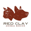 Red Clay Animal Rescue