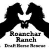 Roanchar Ranch Draft Horse Rescue
