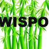 World Interactions and Social Progress Organization (WISPO)